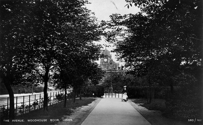 The Avenue, Woodhouse Moor, postcard